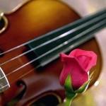 violin.MothersDay.sm